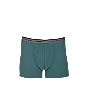Men's exclusive merino wool boxer shorts- hydro green